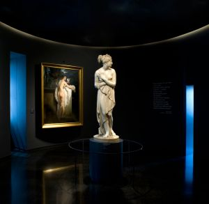 Servizio fotografico di opere d'arte mostra Canova